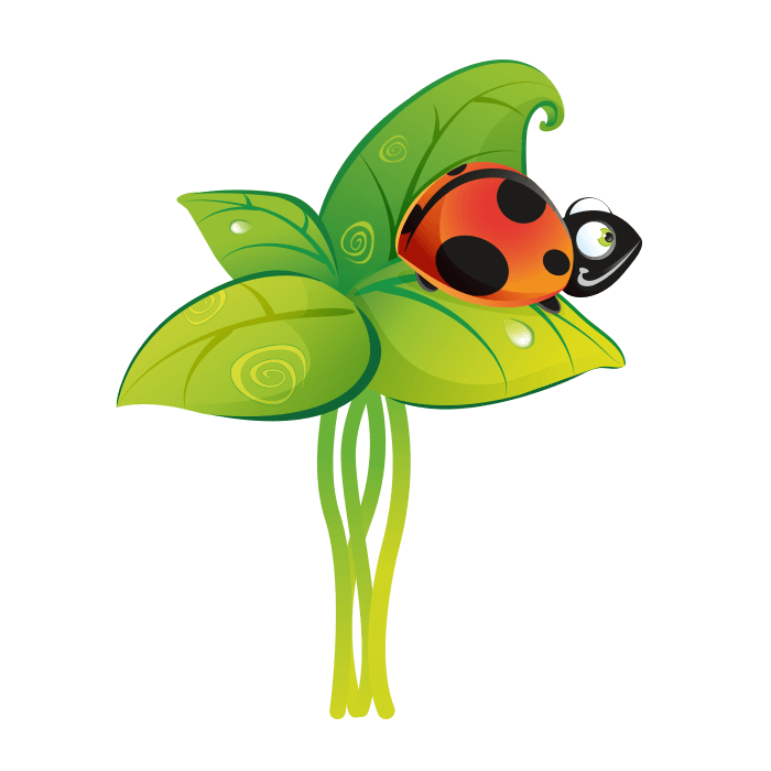 All at the Park Wall Stickers for Children, Ladybug on the Leaves Sticker